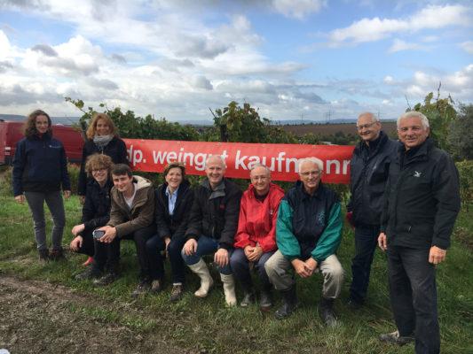 Weingut Kaufmann - Rheingau - Weingut