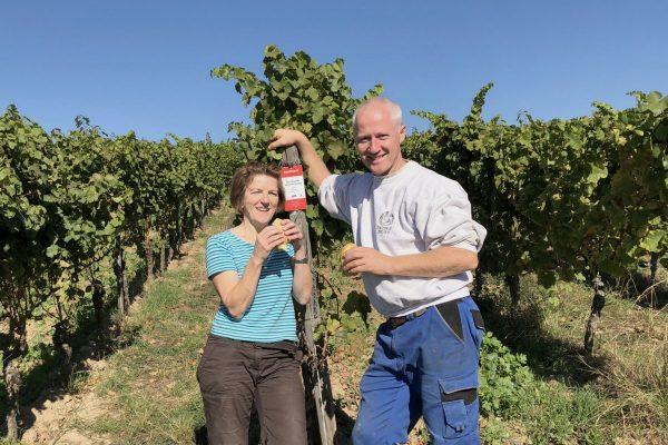 Weinjahr 2018 Weingut, Rheingau